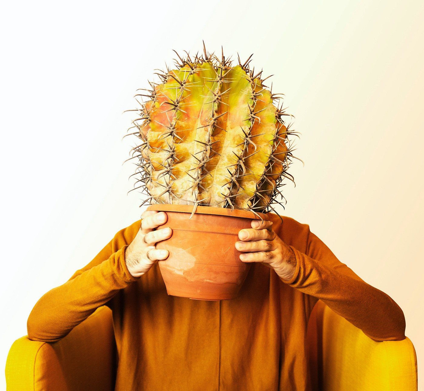 Person holding a cactus plant in front of his face.
