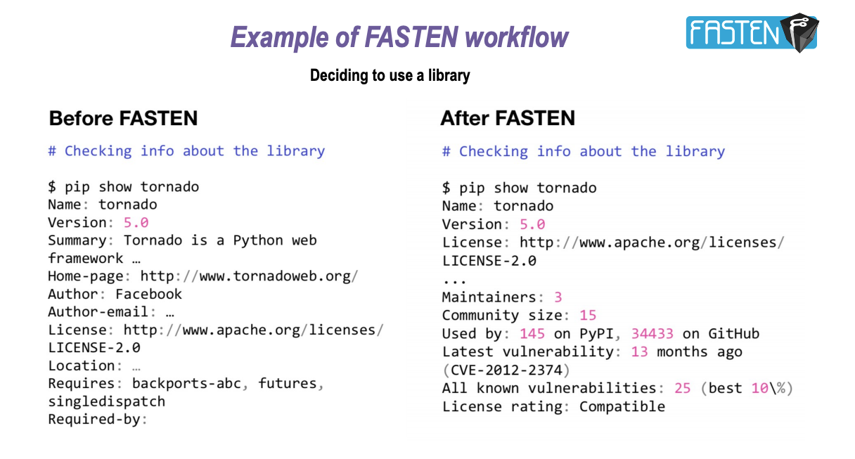 Example of FASTEN information presented using pip command