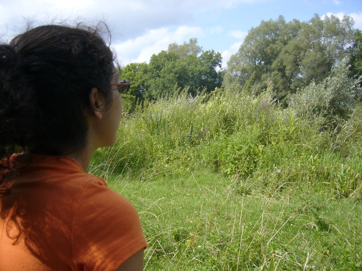 Woman in orange t-shirt looking at lush grassy field and blue sky.
