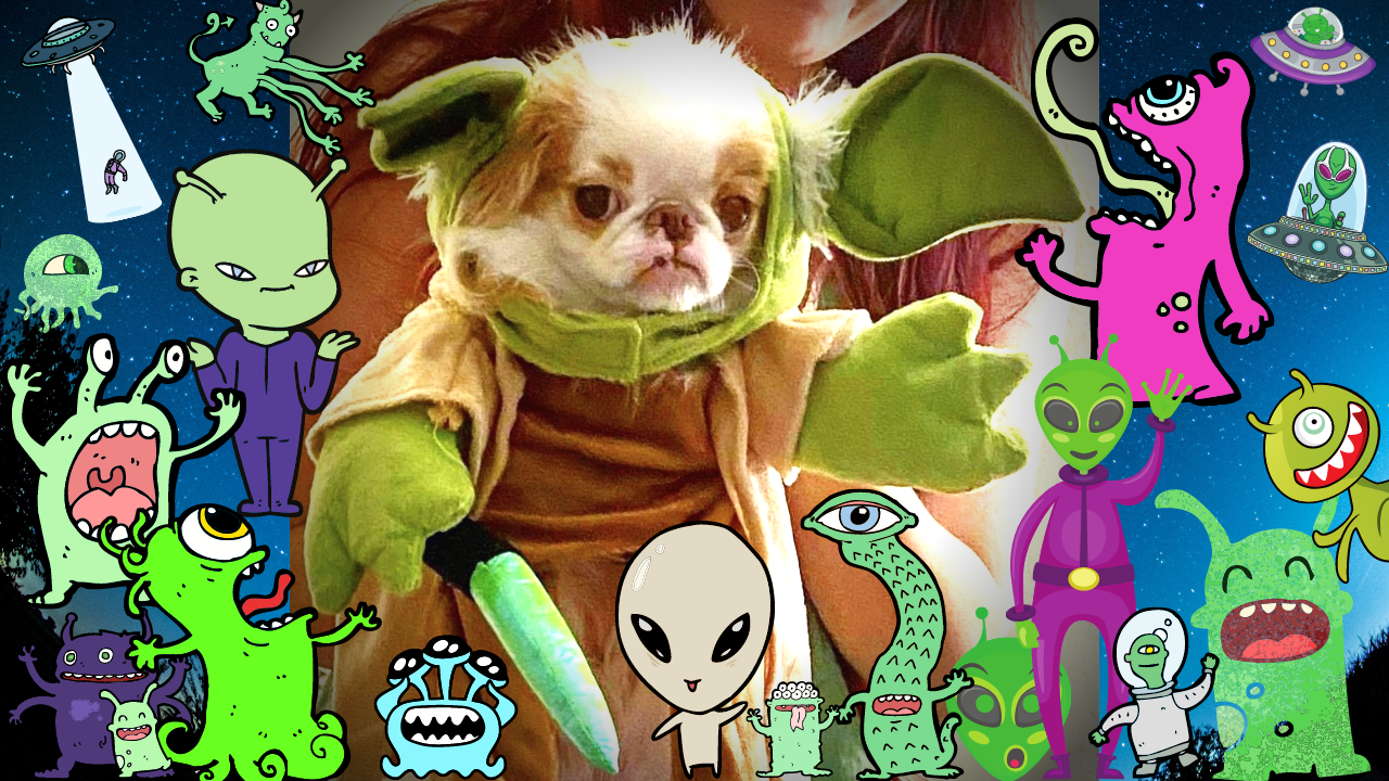 Author's dog in yoda alien costume, surrounded by other aliens