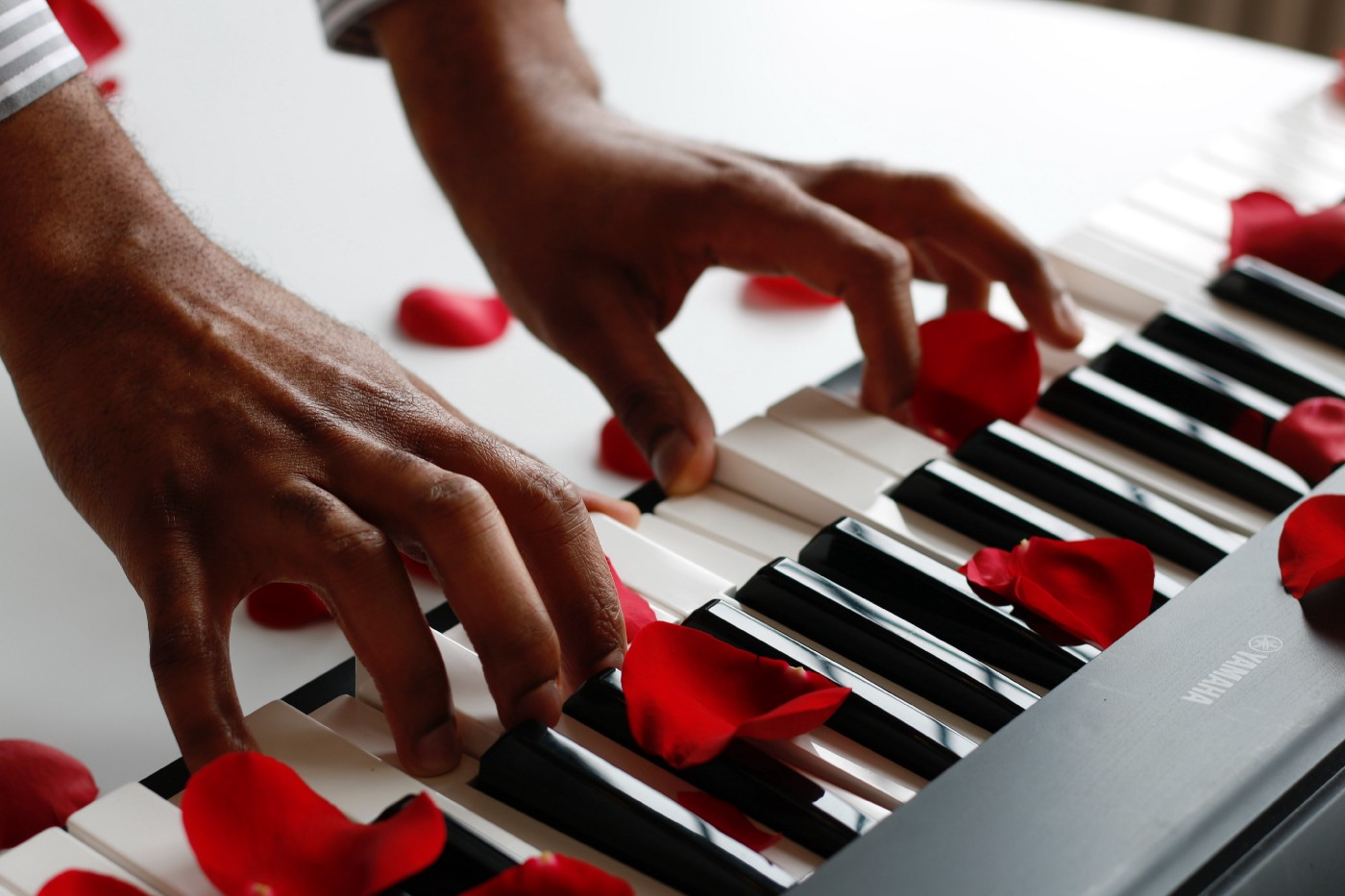 Brown hands playing a keyboard with rose petals scattered over it