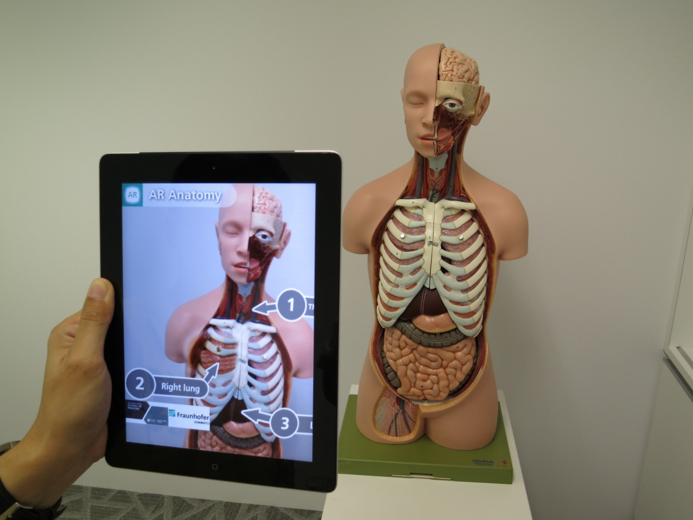 Studying Anatomy using Augmented Reality