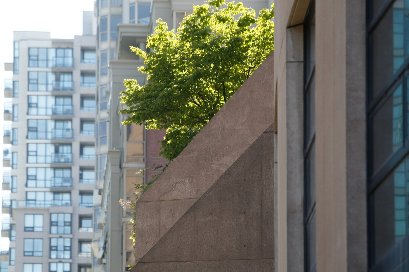 Some greenery is poking out over the concrete balcony of the Vancouver downtown library, which is surrounded by other buildin