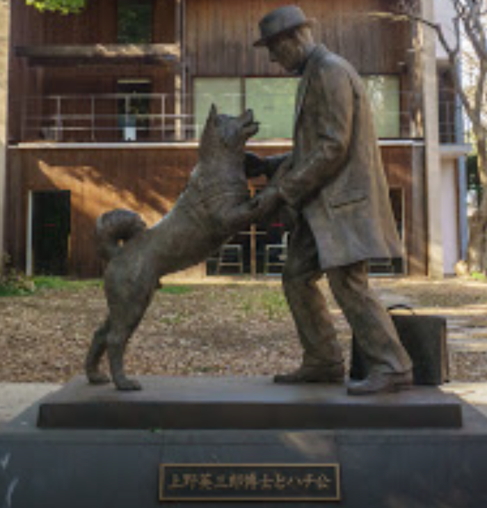 Hachiko- the Most Loyal Dog in the World   by Ash Jurberg ...