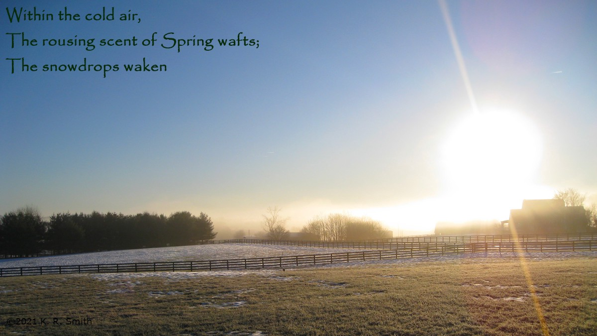 A photo of mist drifting over farm fields in the early morning sun. The snow is melting.