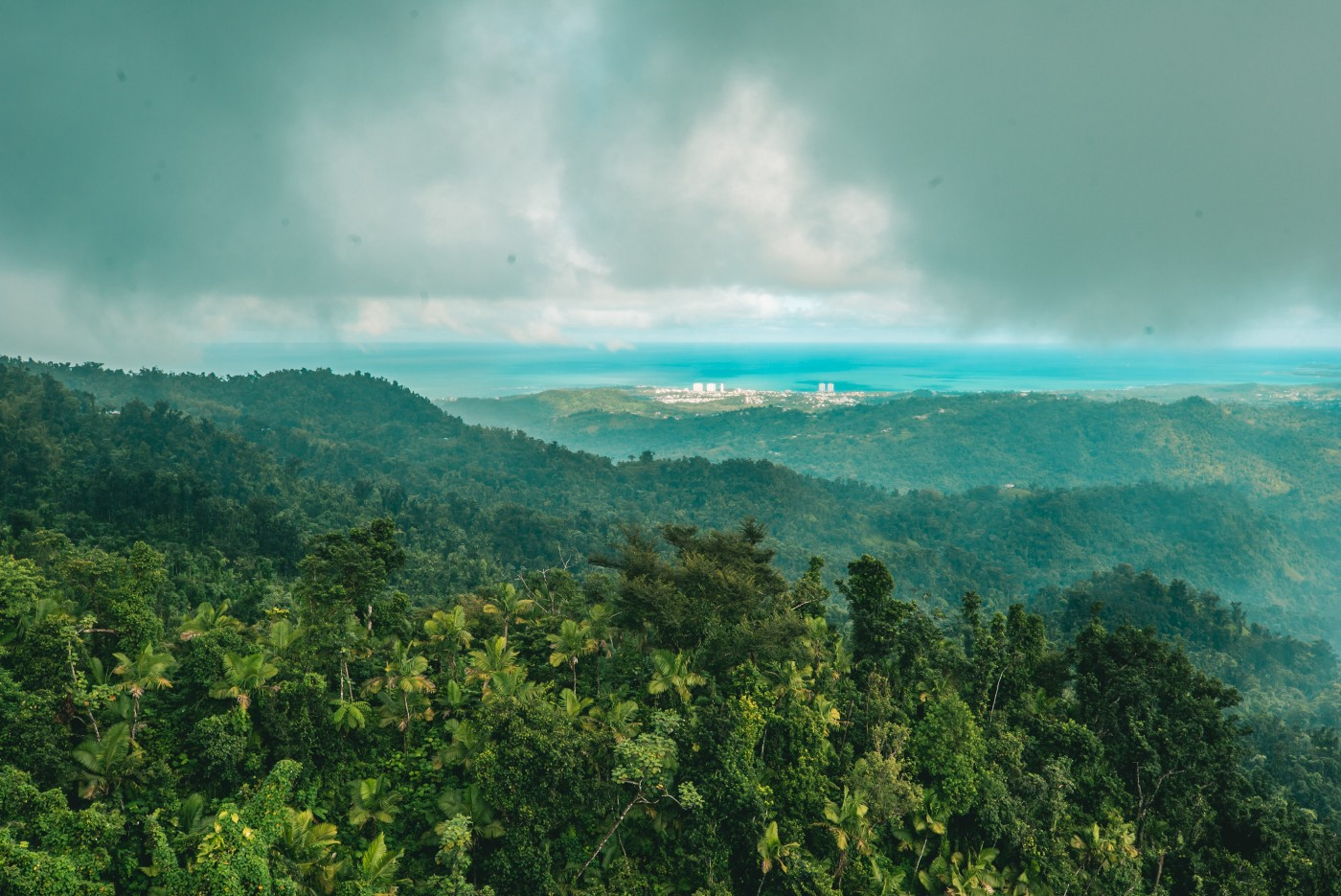 An wide shot of Puerto Rico's protected forests as clouds billow overhead and the sea sprawls out in the distance.