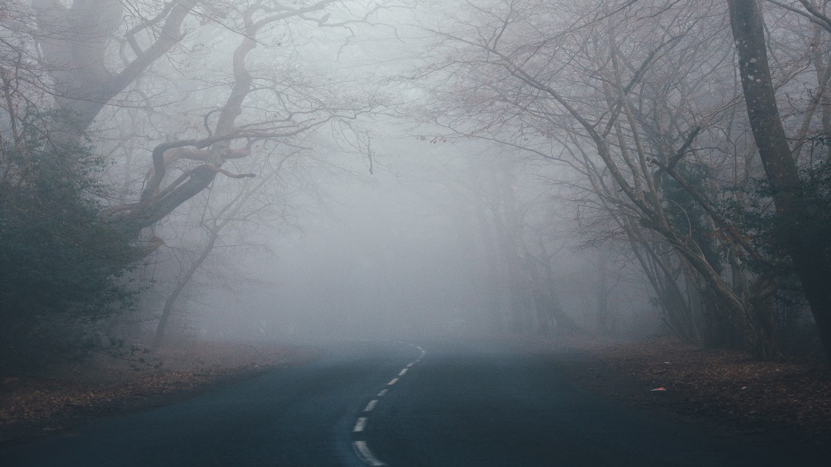 Scary looking road in the woods