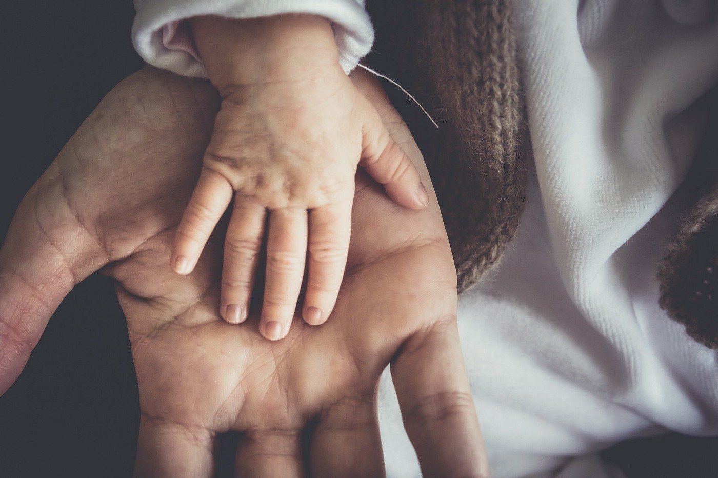 An adult hand representing a father against a child hand, representing parenthood.