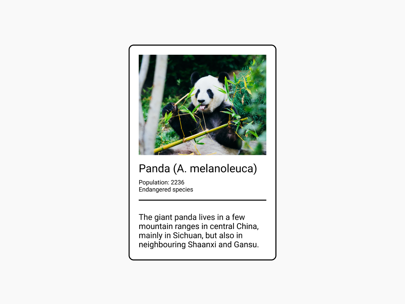 An example of how a card containing information about a panda could be designed.