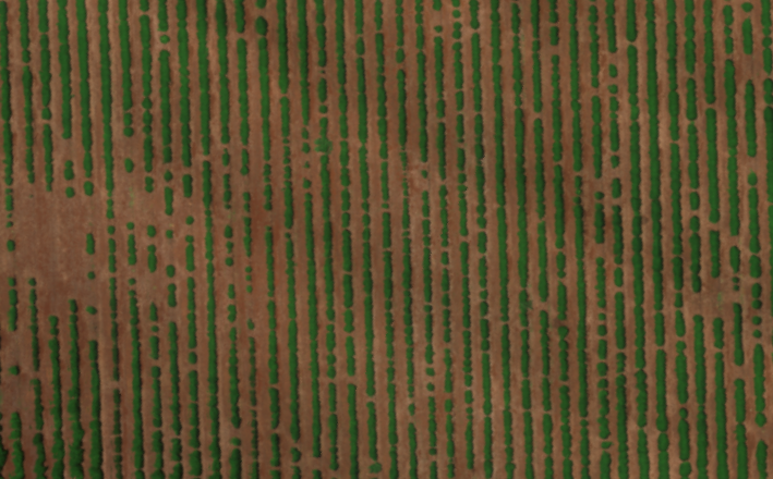 Crop Row Detection using Python and OpenCV - James Thesken - Medium