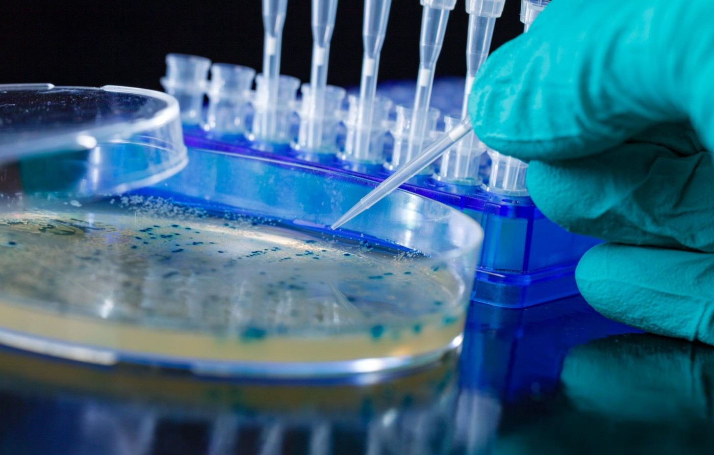 A scientist's hand picks up bacterial colonies with a tube from a petri dish.