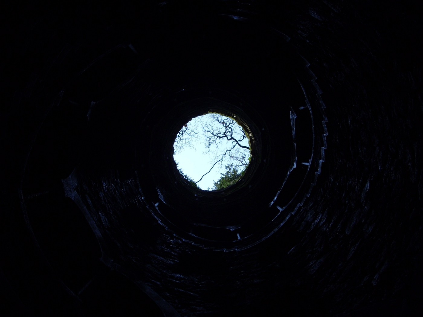 Photograph looking up from the bottom of a deep, dark hole. The sky and trees are visible, but far away.