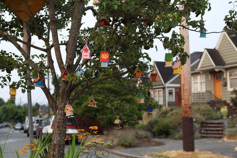 A cluster of small, colorful birdhouses in a tree in the foreground of a residential neighborhood.