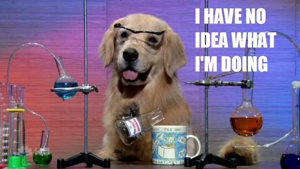 """Dog in science goggles meme with caption """"I have no idea what I'm doing"""""""