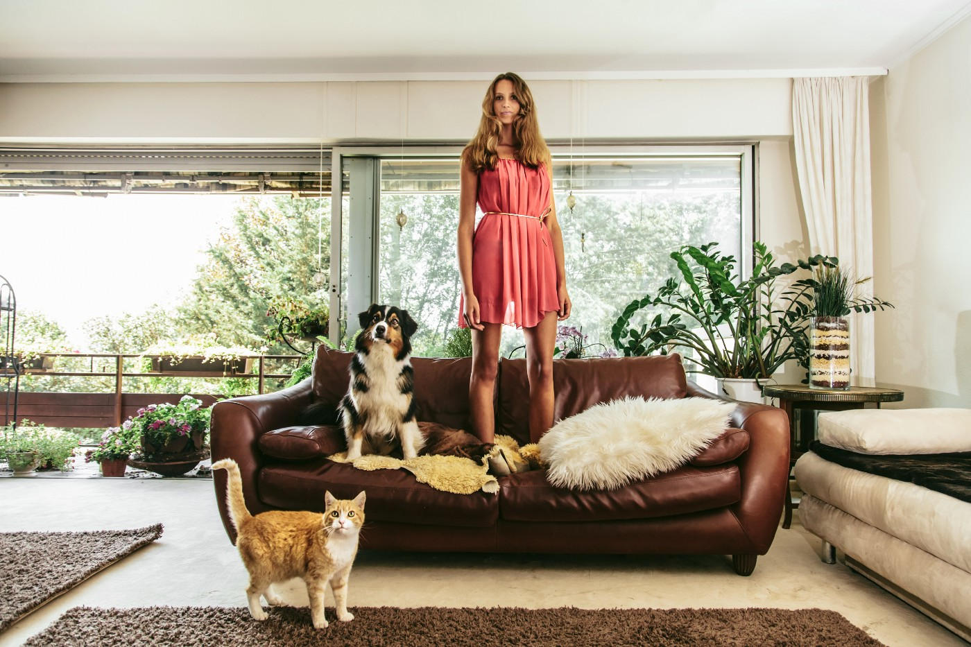 Woman standing on couch, watching TV with her pets.