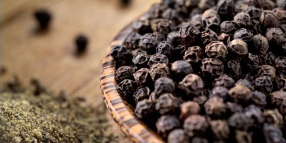 Natural Herbs Helps To Boost Immune System