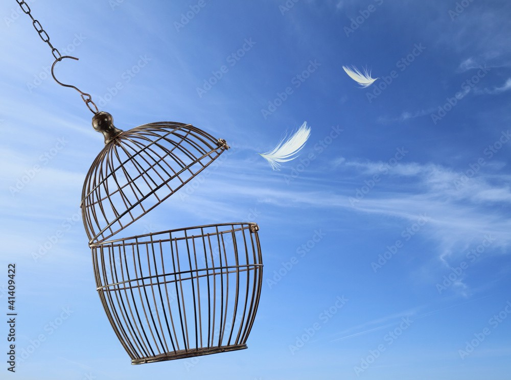 An open birdcage with feathers in the air