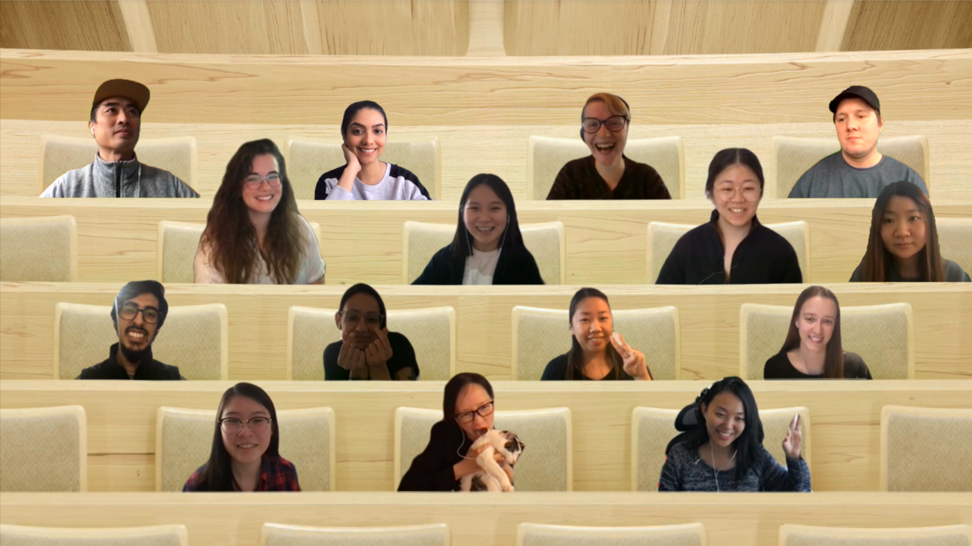 A screenshot of the team from a Microsoft Teams meeting. Everyone is placed in a virtual chair resembling a chair in a lecture hall.