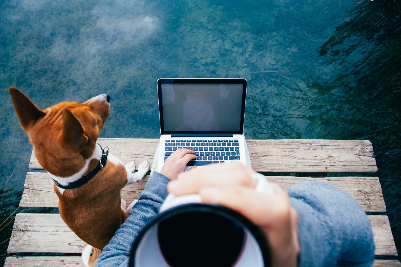 Man typing on laptop with dog.