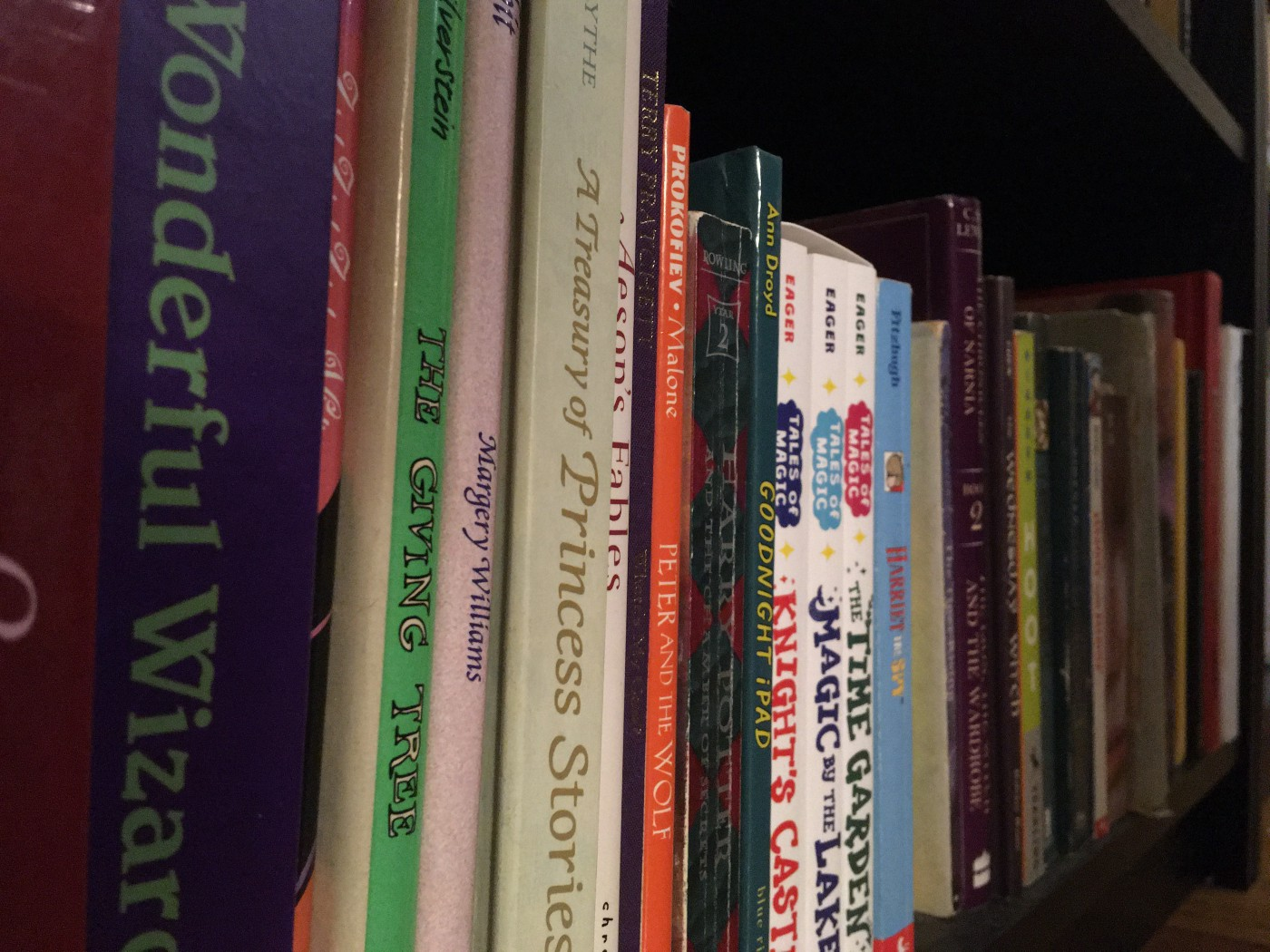 lots of old children's book spines on a bookshelf, needs dusting