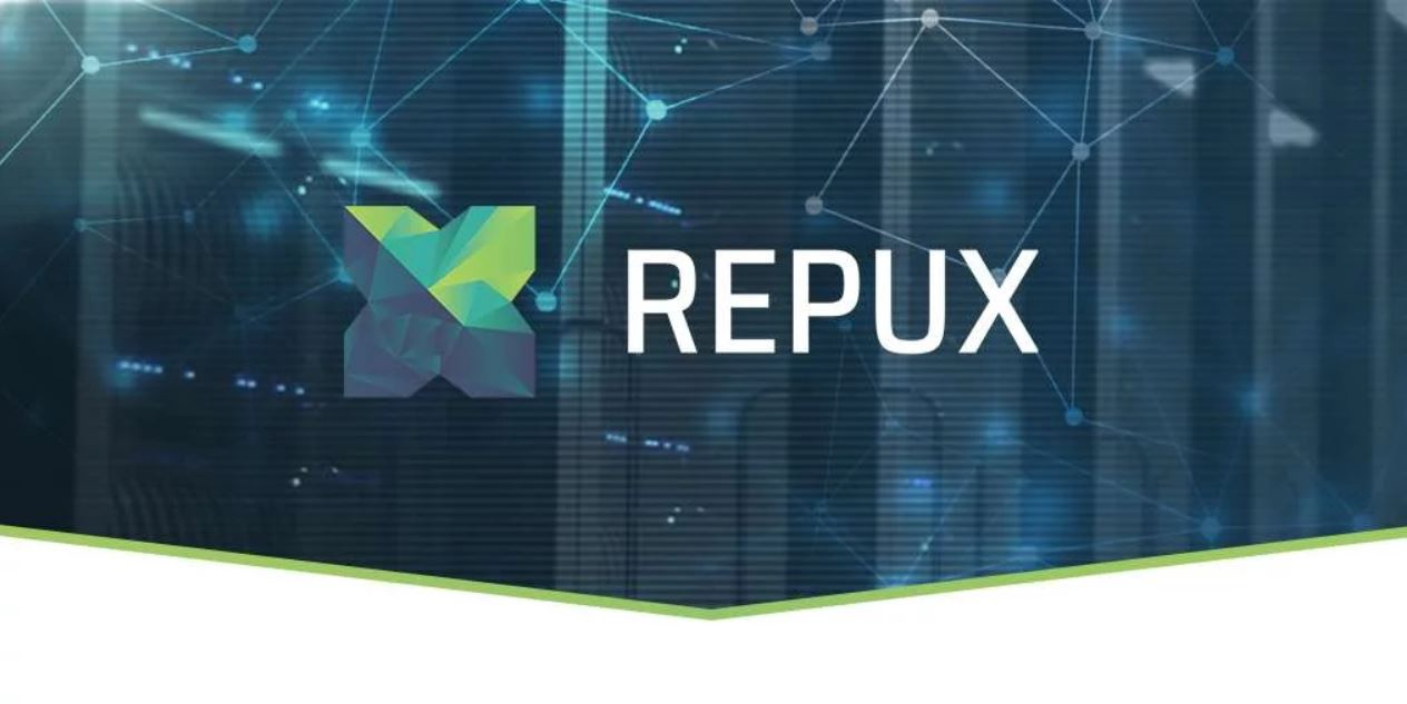 Image result for repux images