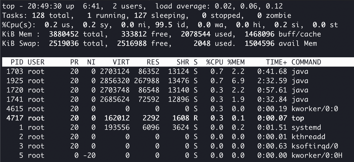 The Linux process manager top running in xterm