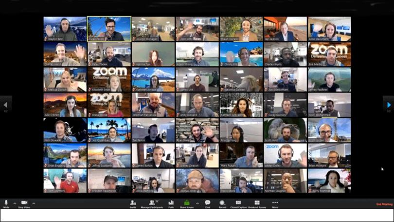 Screen from a Zoom call with a lot of participants