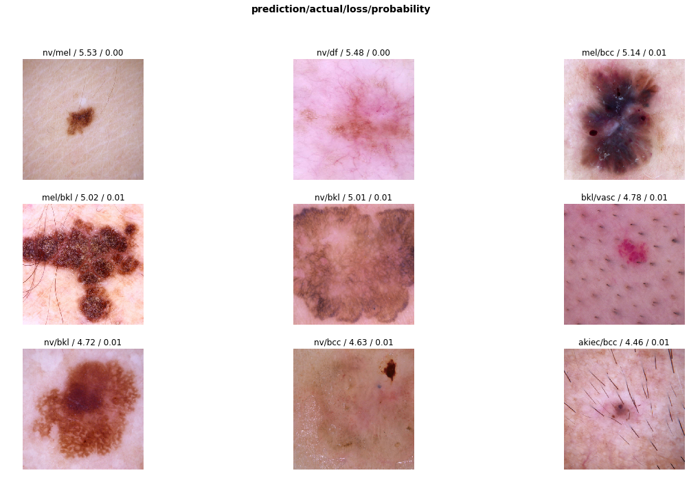 Deep Learning for Diagnosis of Skin Images with fastai