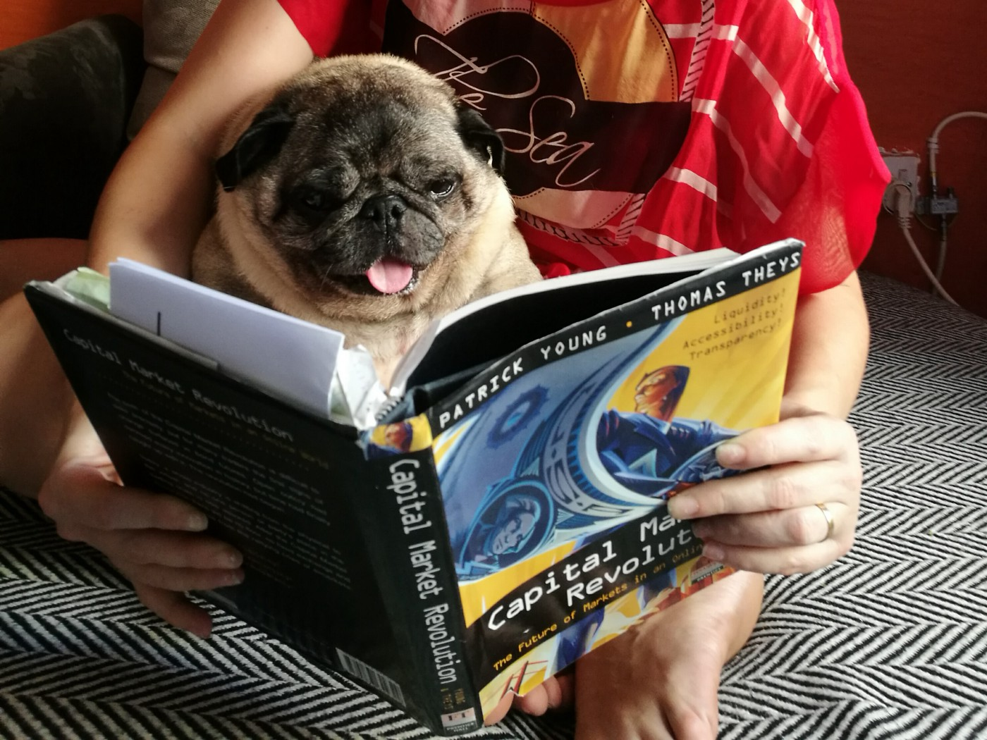"""Toby reading my first book """"Capital Market Revolution!"""" in preparation for his appearances on IPO-Vid."""