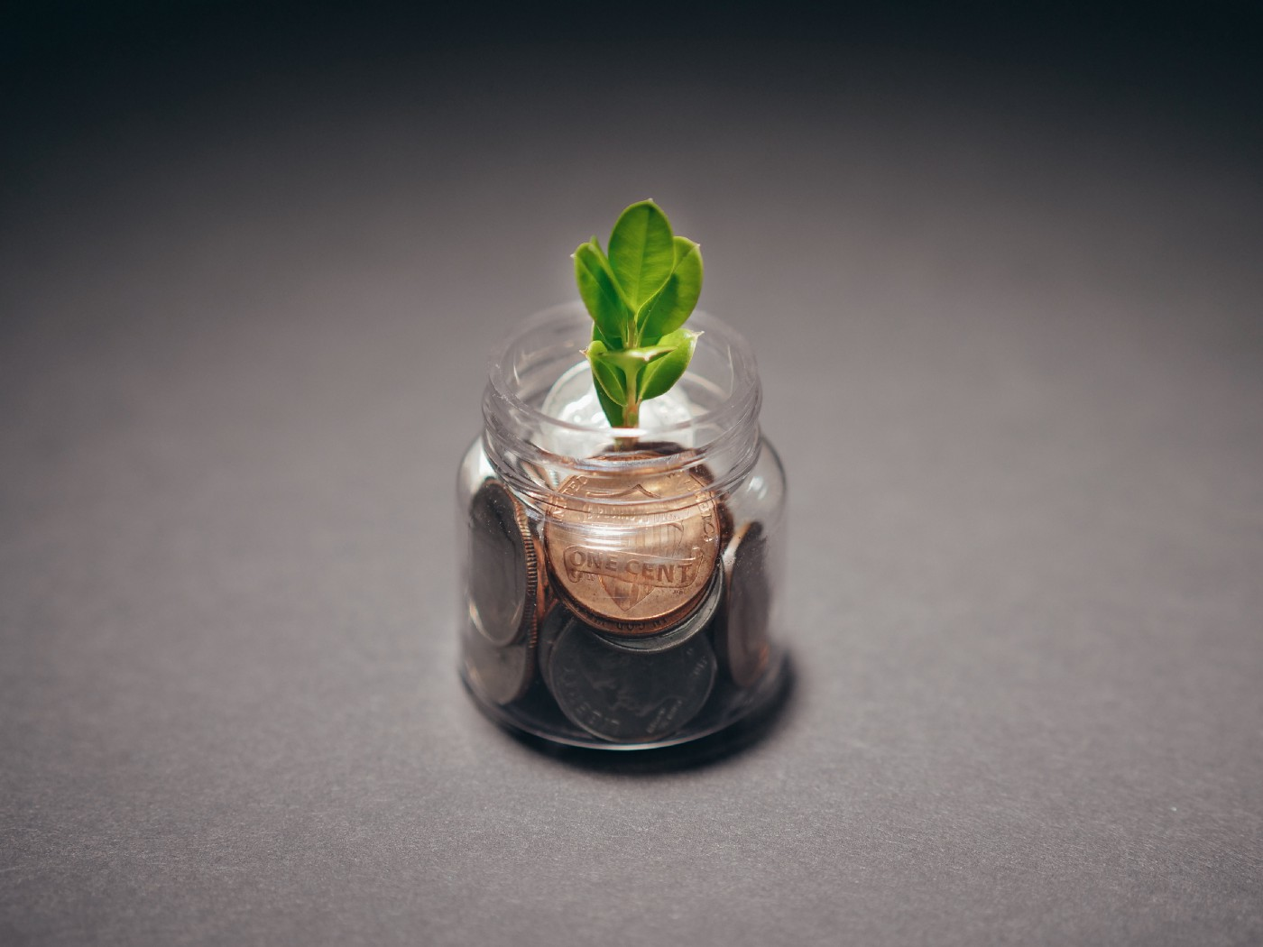 small jar with a few coins and a small plant