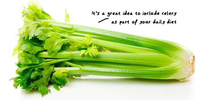 How to cum more: eat celery