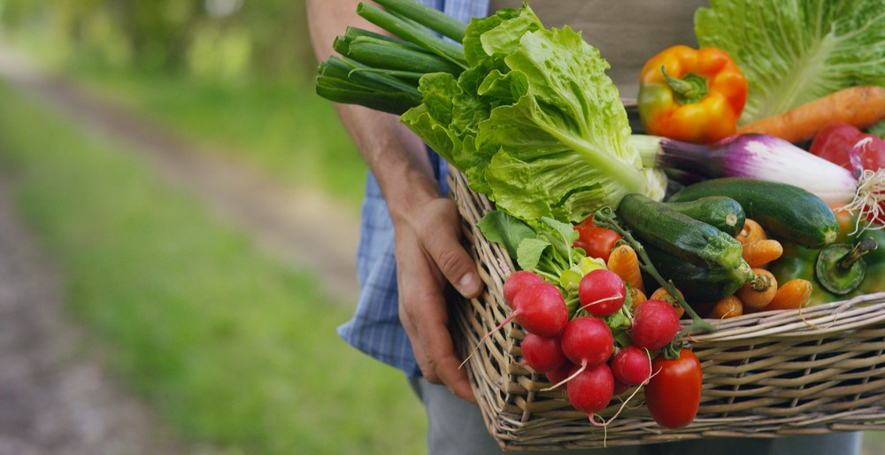 A person holding a basket of vegetables—growing your own food