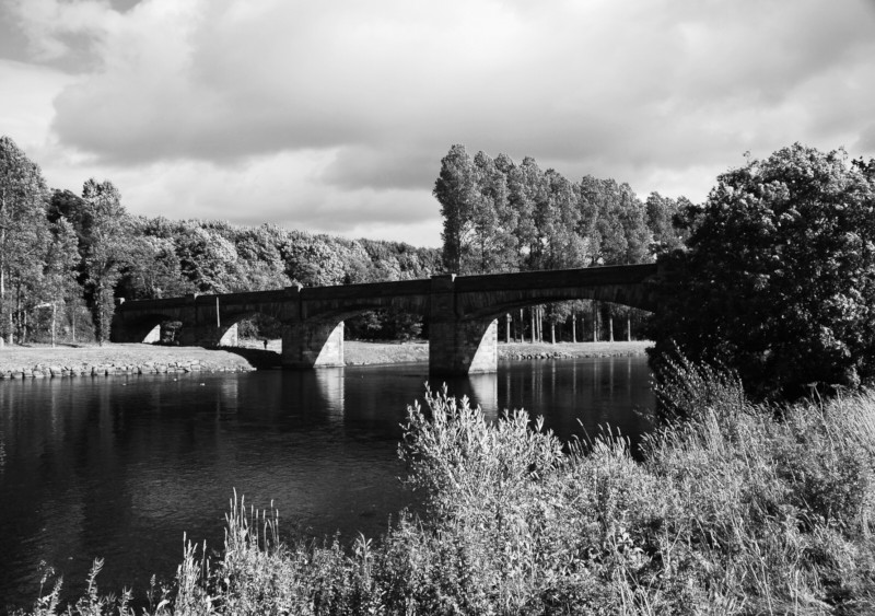 On the Banks of the River Tweed