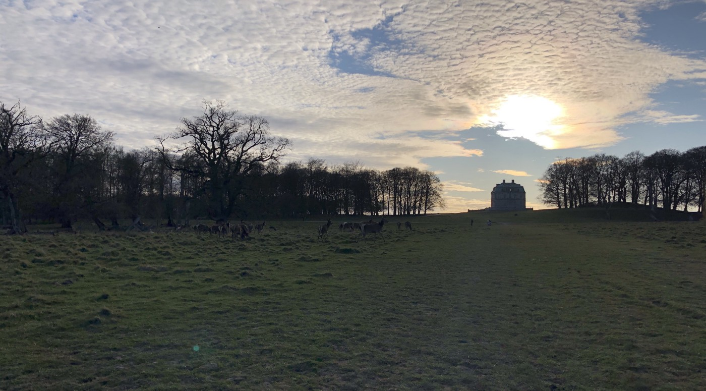 A palace and grass field. The sun is behind a cloud so everything poorly lit.