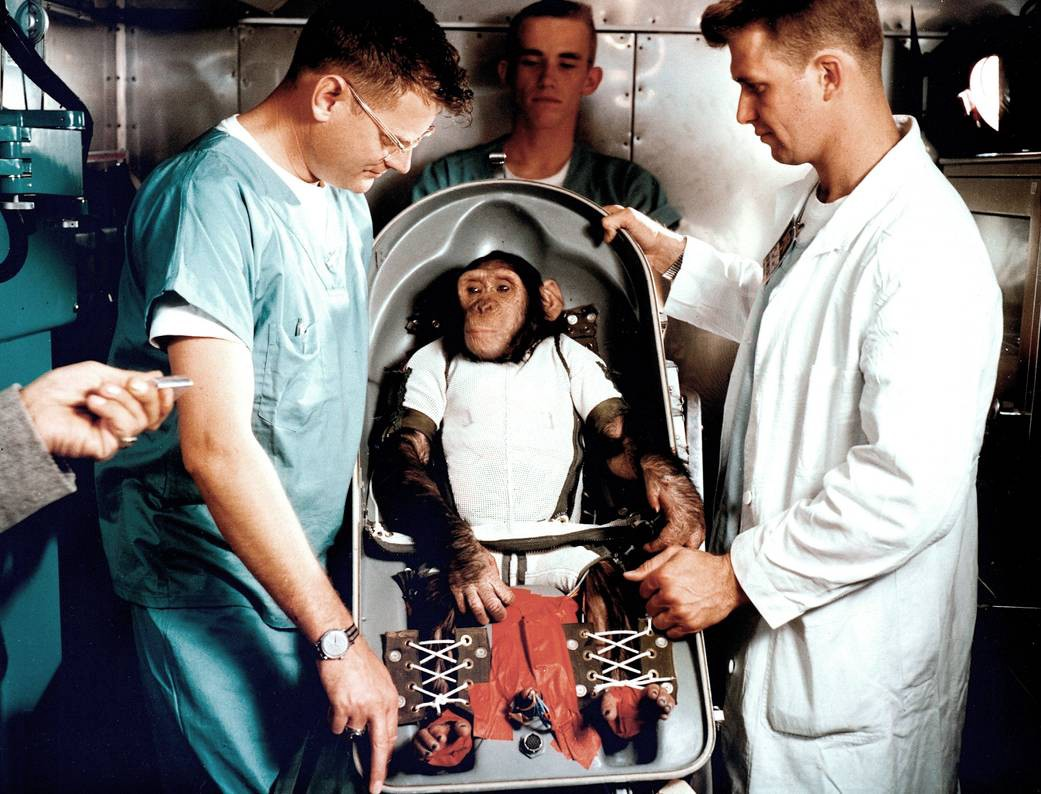 an archival photo of scientists in lab coats and scrubs surrounding a juvenile chimpanzee strapped into a rocket