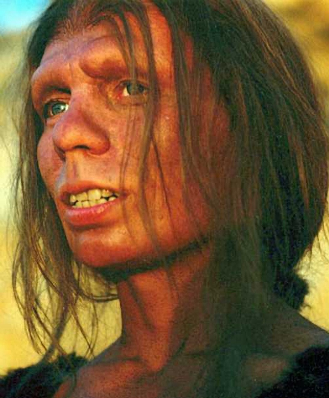 Reconstruction of a neanderthal woman.