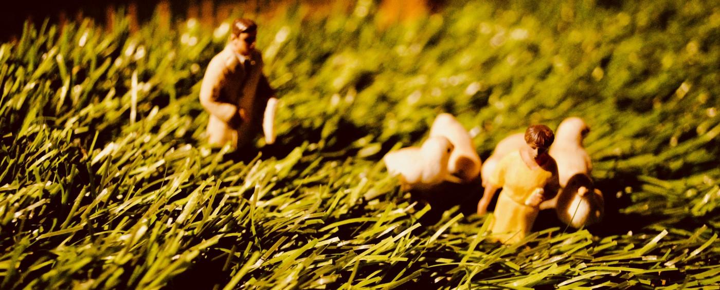 Small plastic models (of a man, a woman and some chicks) walk through long grass.