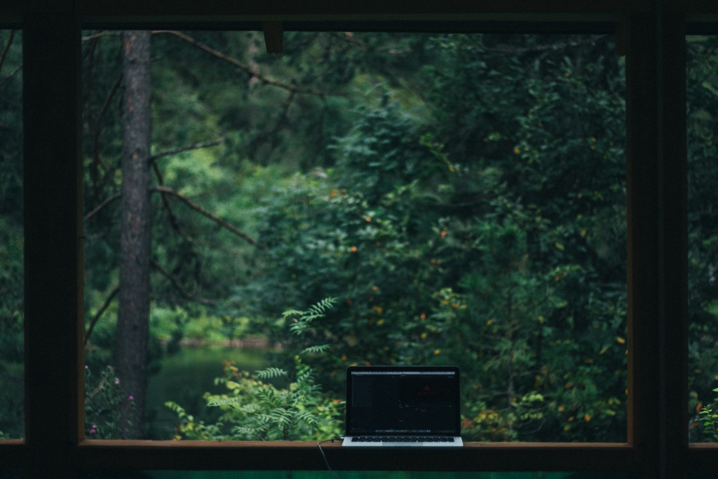 Open laptop by a window overseeing some greenery.