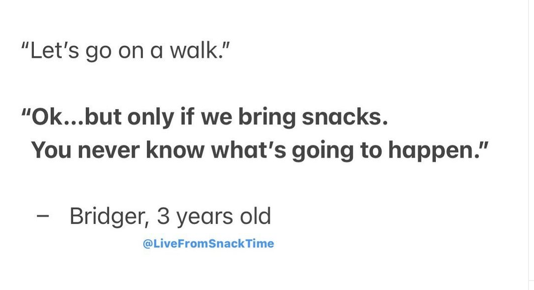 """Instagram Post that reads: """"Let's go on a walk."""" and the child answers """"Ok..but only if we bring snacks. You never know what's going to happen."""""""