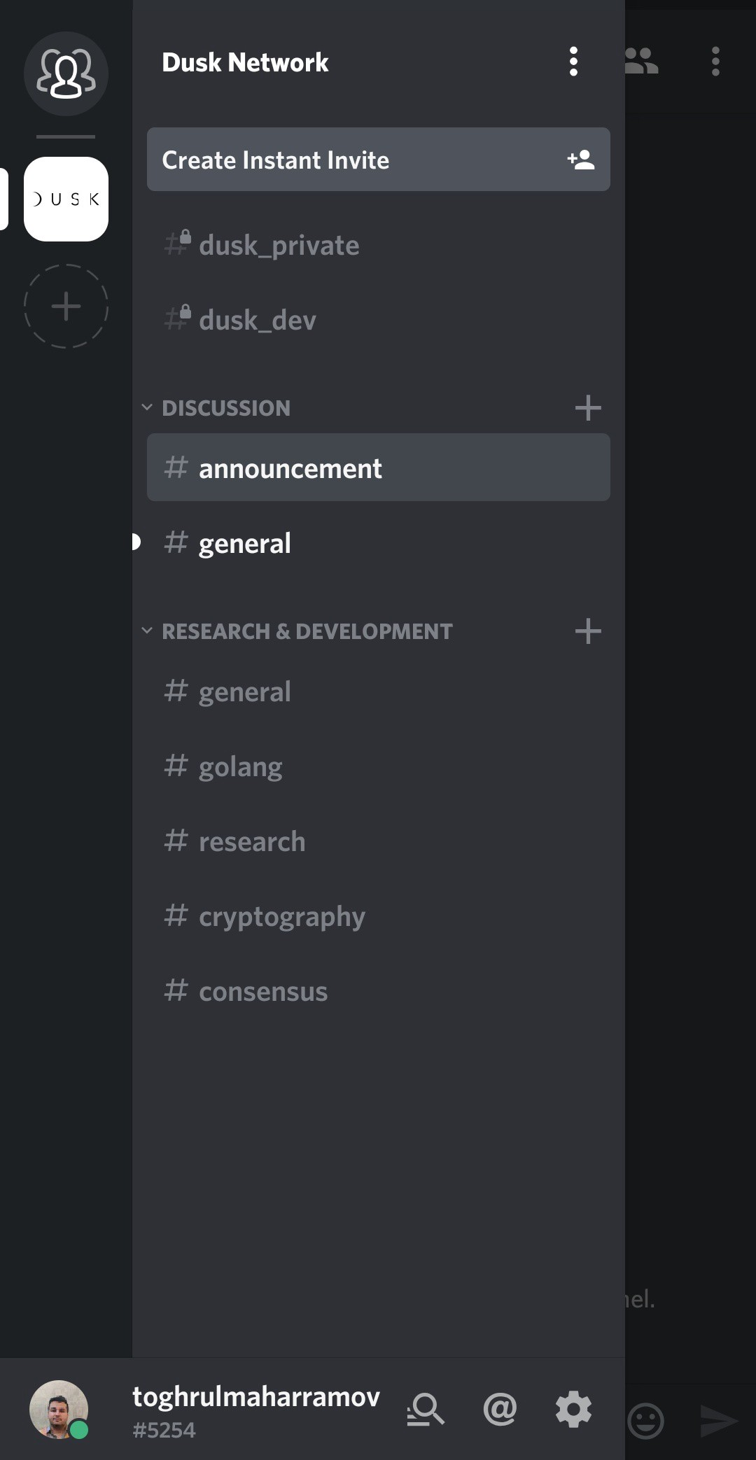How to make the most use out of Dusk Network Discord server