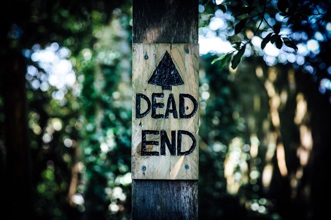 "Wooden sign on a wood post saying ""DEAD END"""