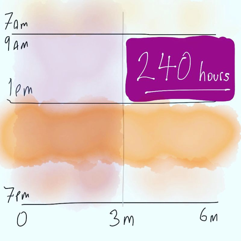 Diagram of time in 6 month project: months on x axis & daily hours on y axis to show how useful project time is compressed