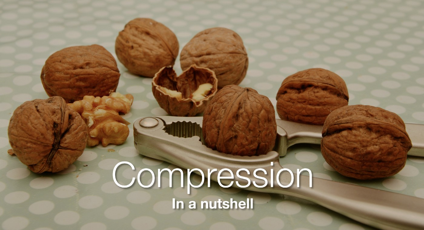 """Walnuts in a nutcracker with the caption """"Compression In a nutshell"""""""