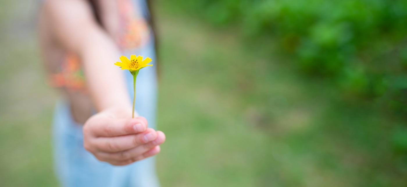 A person holds up a flower.