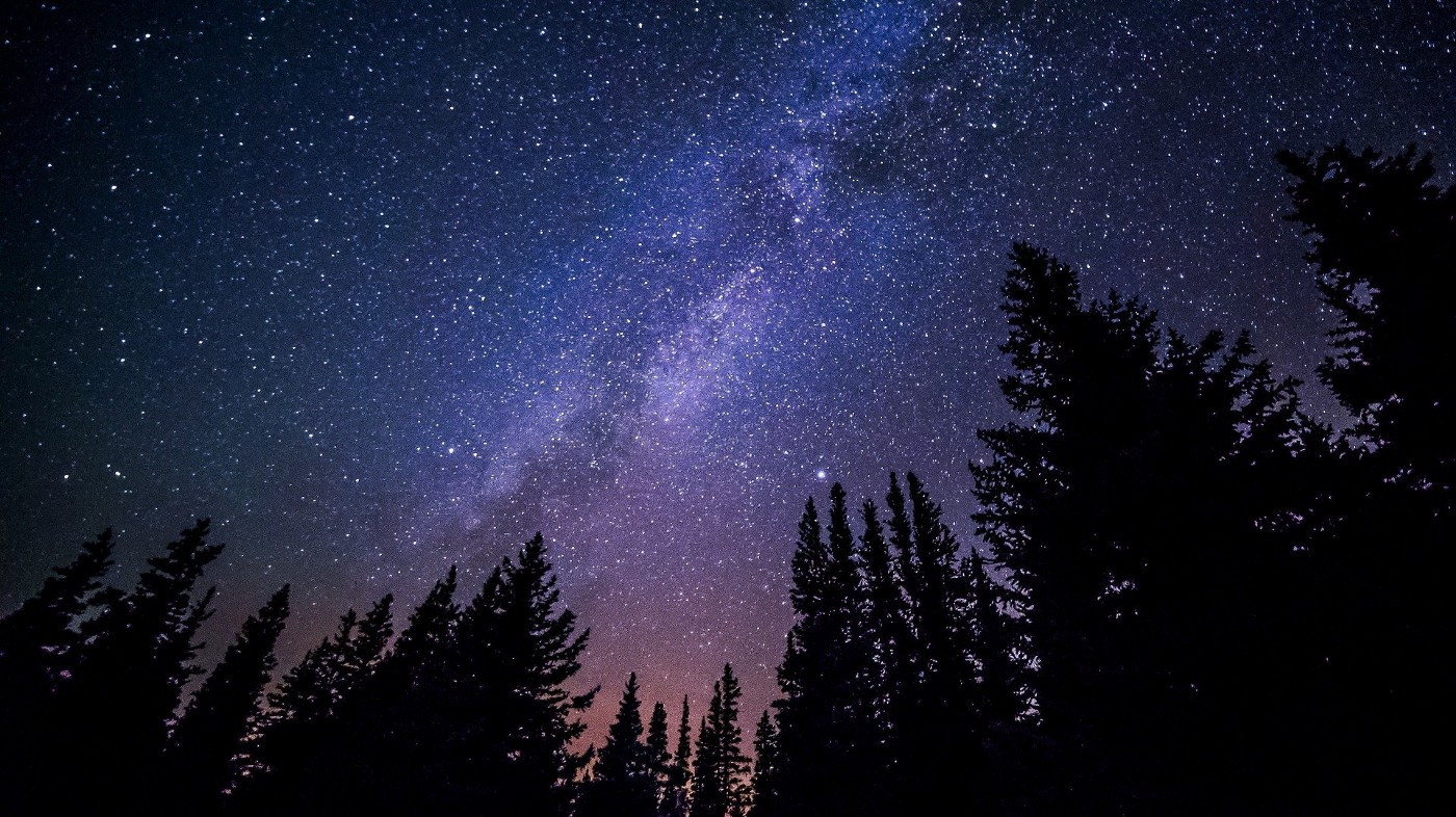 A blue-purple sky covered in stars. A dark treeline is at the bottom of the picture.