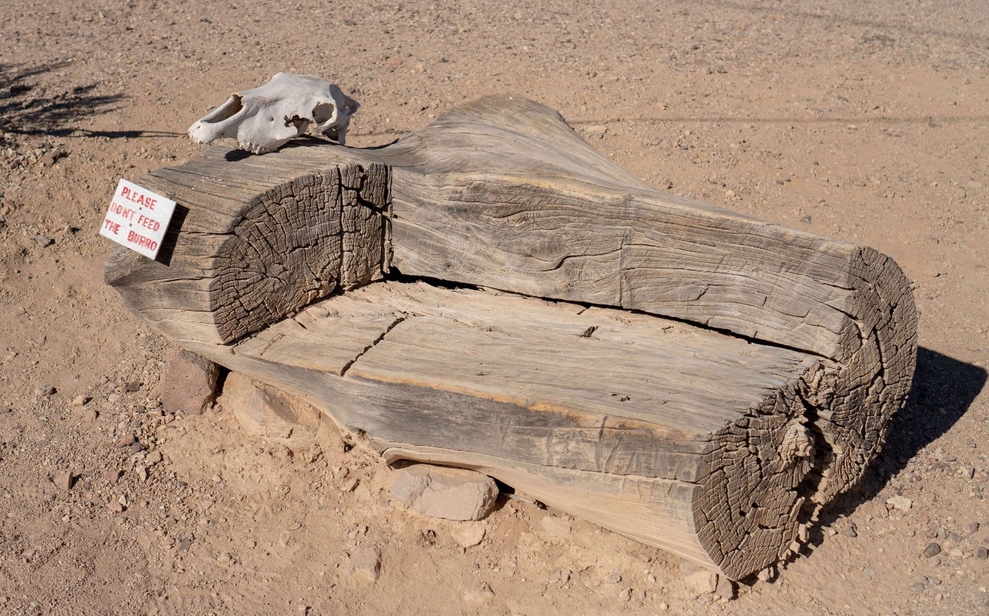 "A wooden bench in the desert. On the right side of the bench is a skull and a sign that reads ""Please don't feed the burro"""