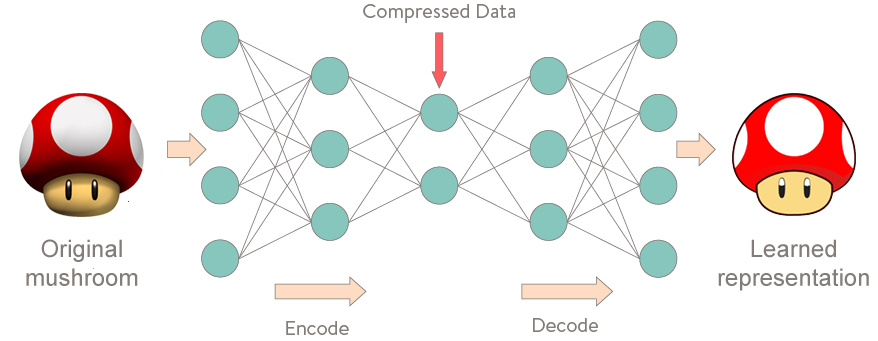 Unsupervised sentence representation with deep learning