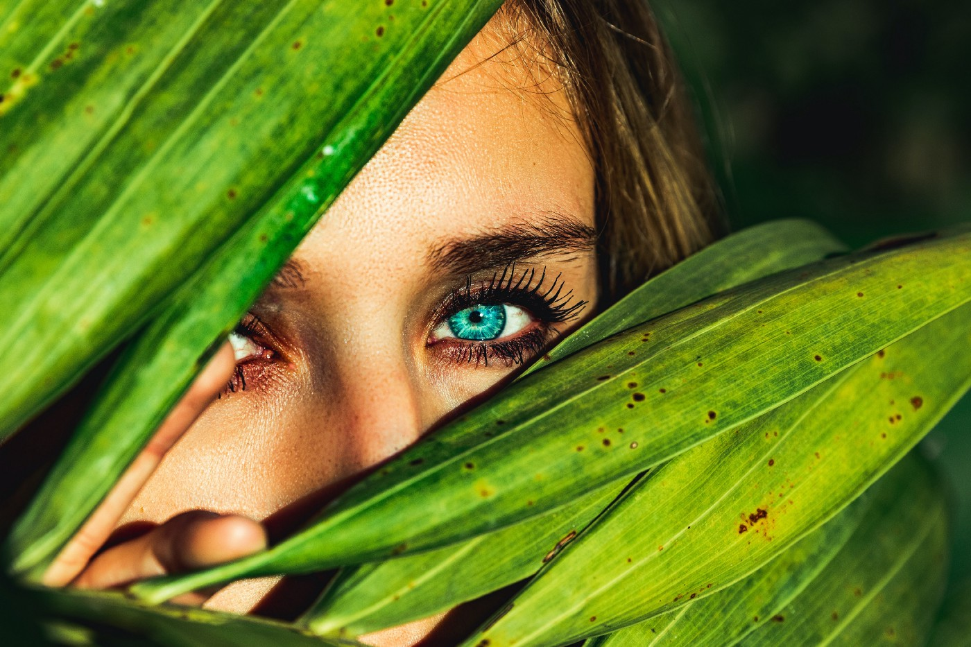 Woman with blue eyes hiding behind green foliage and looking directly at the camera. Her face is partially covered with greenery. Her eyes look turquoise blue. She has dark brown eyebrows.