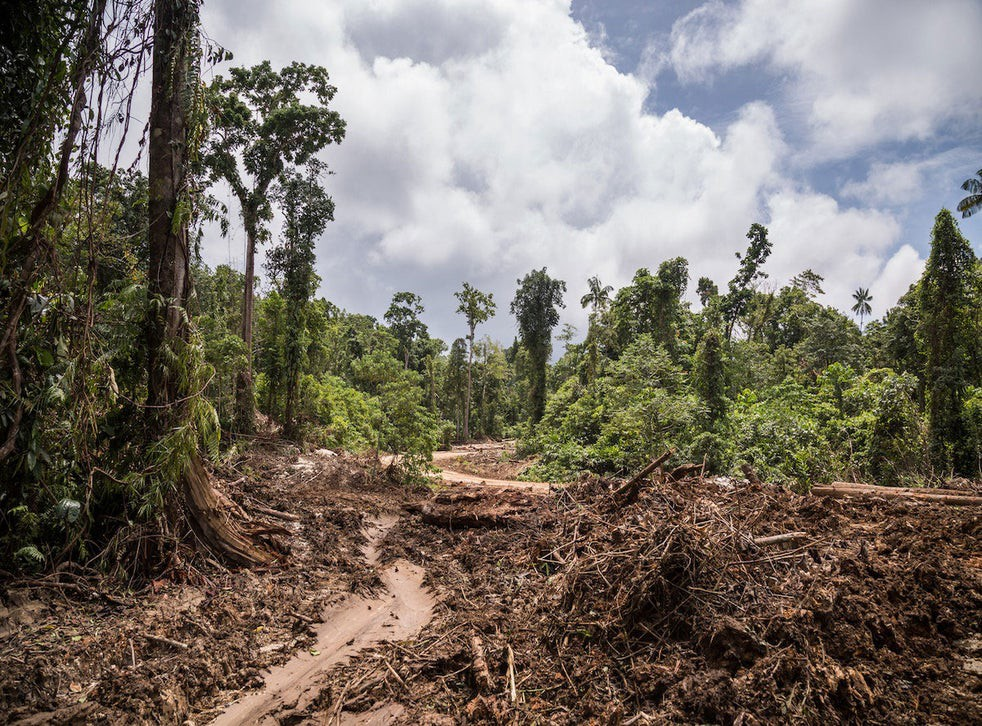 Environmental destruction can be caused by making investments in businesss who don't care for the environment.