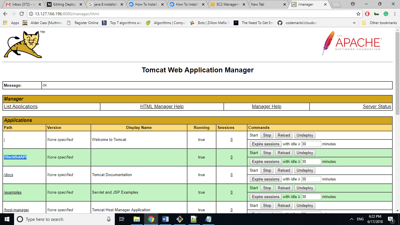 Deploy Java web application project from NetBeans to AWS-Ec2 on